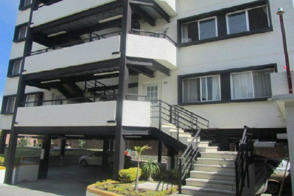 Departamento en renta cerca de San Pedro Mártir